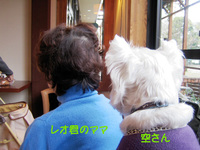 20061209_026_1