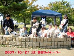 20071021_028_3