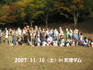 20071110_113_2