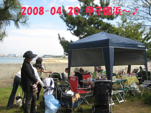 2008041820_098