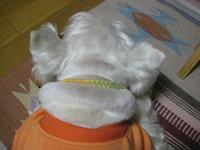 20080520_068_2