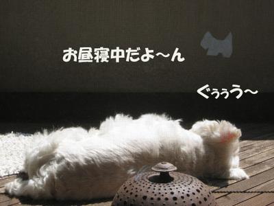 2008091012_052