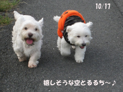 200810131017_032_2