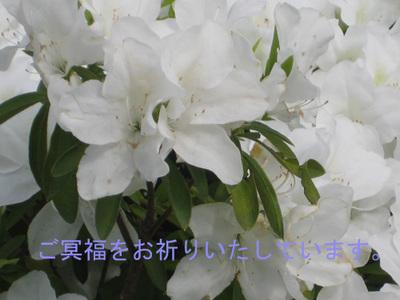 20090426_003