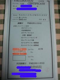 20101105_001_2