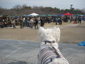 20110306_003