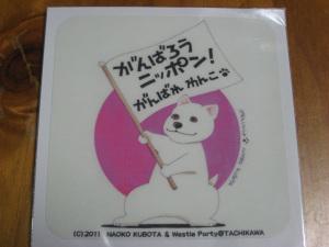 20110505_010