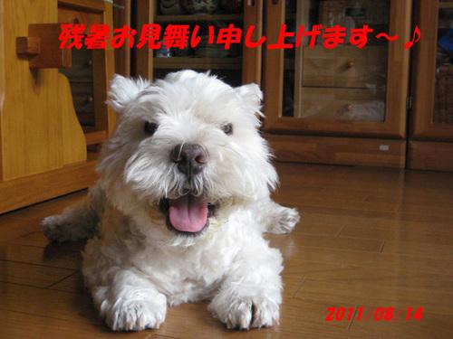 2011080113_036