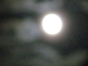 20110930_024
