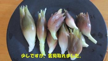 2012073031_002